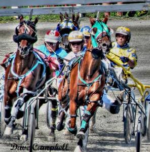 OHW Day Race