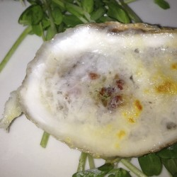 Oyster Blog 7 cropped