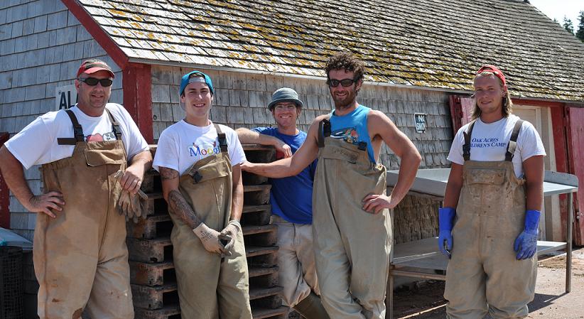 Oyster Farming Blog 3