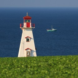 Beautiful Lighthouse in Cape Tryon Prince Edward Island.