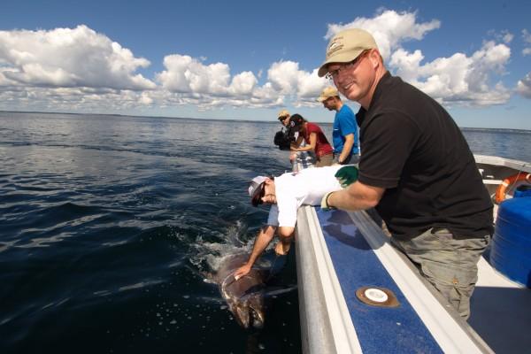 Bruce's Tuna Charters