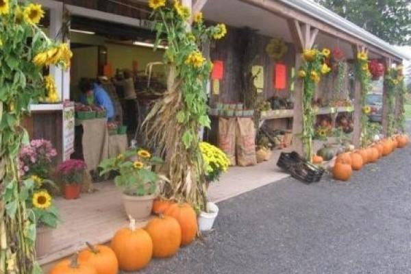 Balderston's Farm Market