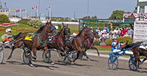 Old Home Week harness Racing, Prince Edward Island