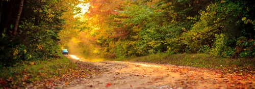 Driving down a Fall dirt road in Prince Edward Island