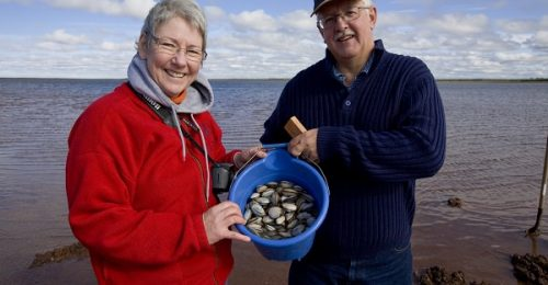 Experience PEI - Happy Clammers