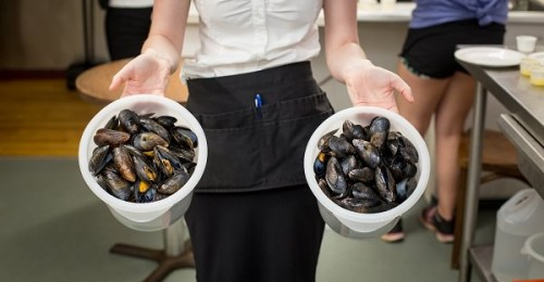 New Glasgow Lobster Suppers Mussels
