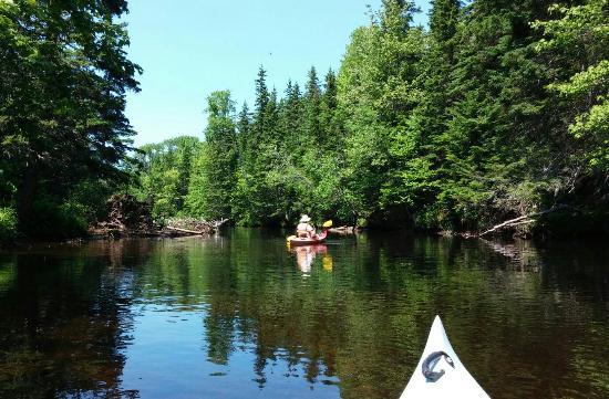 Kingfisher Outdoors Inc. – Kayaking