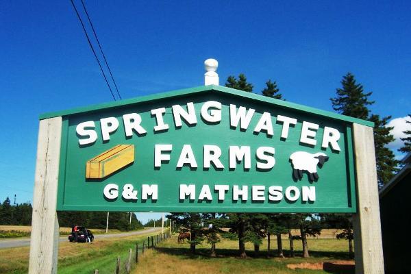 Springwater Farm