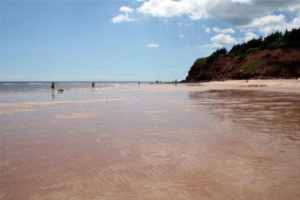 Basin Head – Beyond the Beach