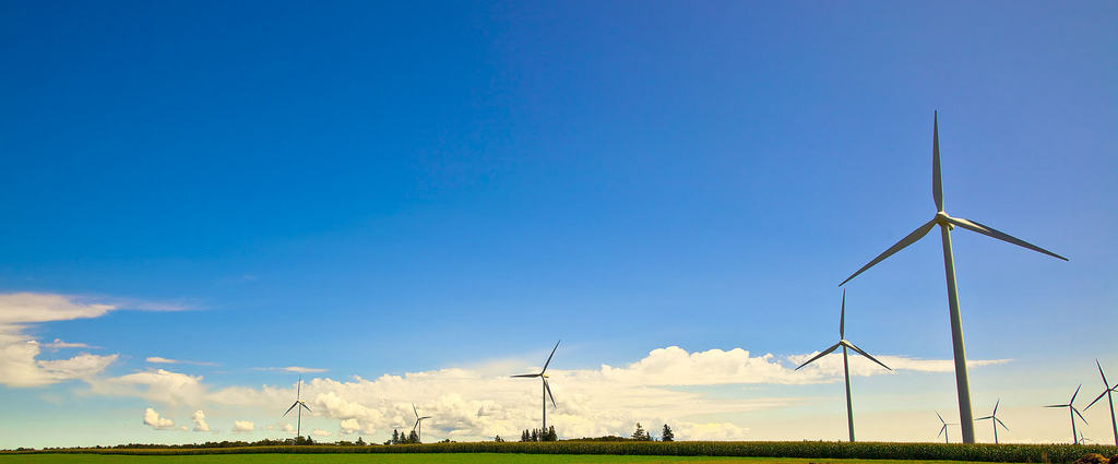 Western PEI - Wind Farm (Photo by Racey Tay)