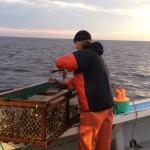Fishing PEI Lobsters