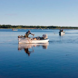 Oyster fishing along Canada's Oyster Coast