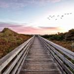 Fall in Prince Edward Island