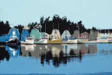 French River Reflections - Tony Diodati, Prince Edward Island