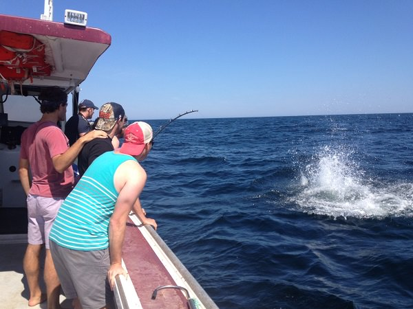 Joey S Deep Sea Fishing Welcome Pei