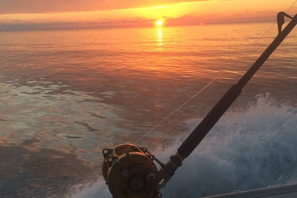 Joey's Deep Sea Fishing, Prince Edward Island