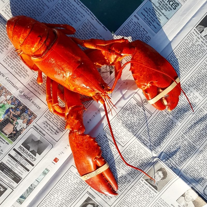 Lobster Eight Ways | Welcome PEI Local's blog