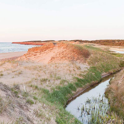 View All About PEI